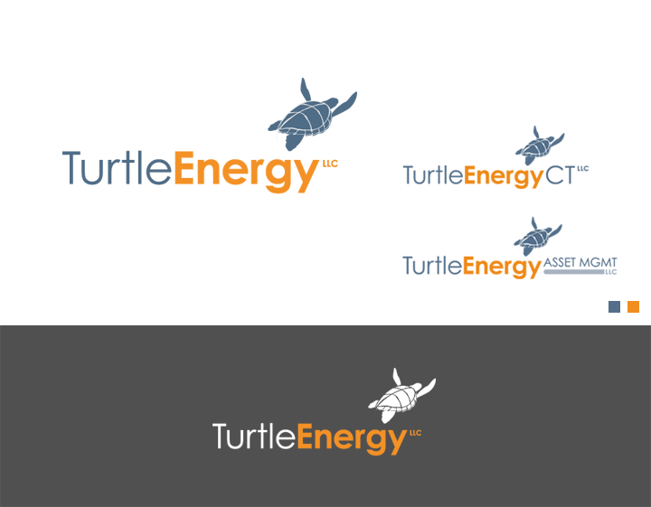 TurtleEnergy Brand Signature